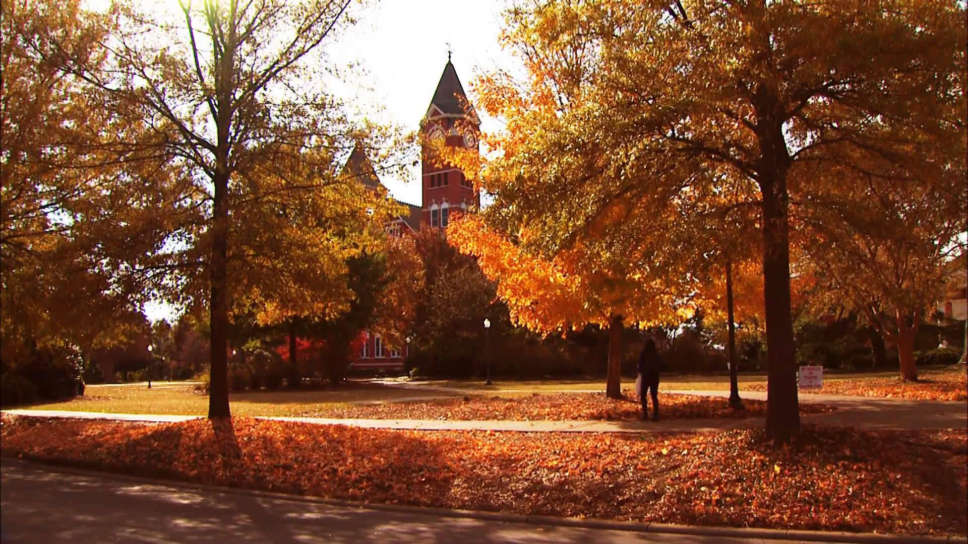 Auburn, fall, colors